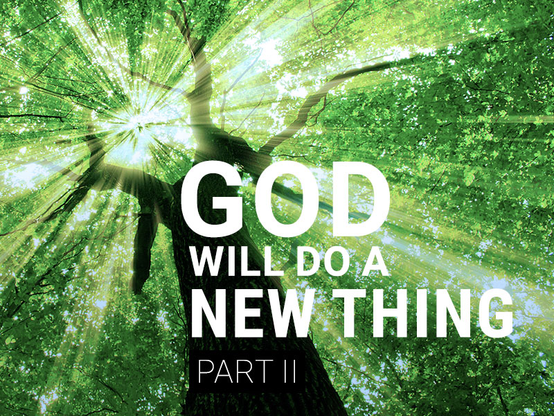 God Will Do A New Thing - II